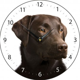 Chocolate Labrador Wall Clock 28.5cm