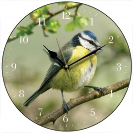 Blue Tit Wall Clock 28.5cm