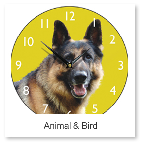 Animal & Bird Wall Clocks